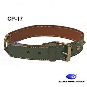 CP-17 collar_web